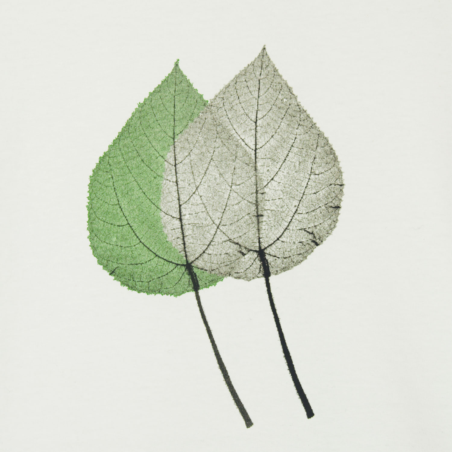 T-lab leaf environmental